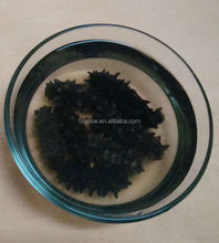 Quality Dry Sea Cucumber for sale.