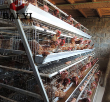 Galvanized Metal Chicken Cage For Breeding Chicken Alibaba Supplier