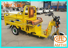 Motorcycle Three Wheel Three Wheeler Auto Dump Rickshaw 3 Wheel Cargo Tricycle For Sale,Amthi