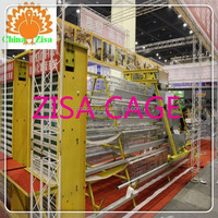 full automatic poultry equipment / chicken cage / broiler cage good price