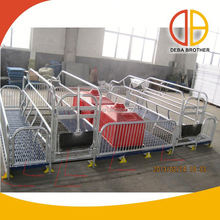 New product pig farm galvanized pipe steel crates