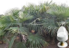 Export high quality exported sale of saw palmetto powder extract