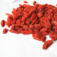 New Chinese Ningxia Top grade Quality Dried ningxia goji berry