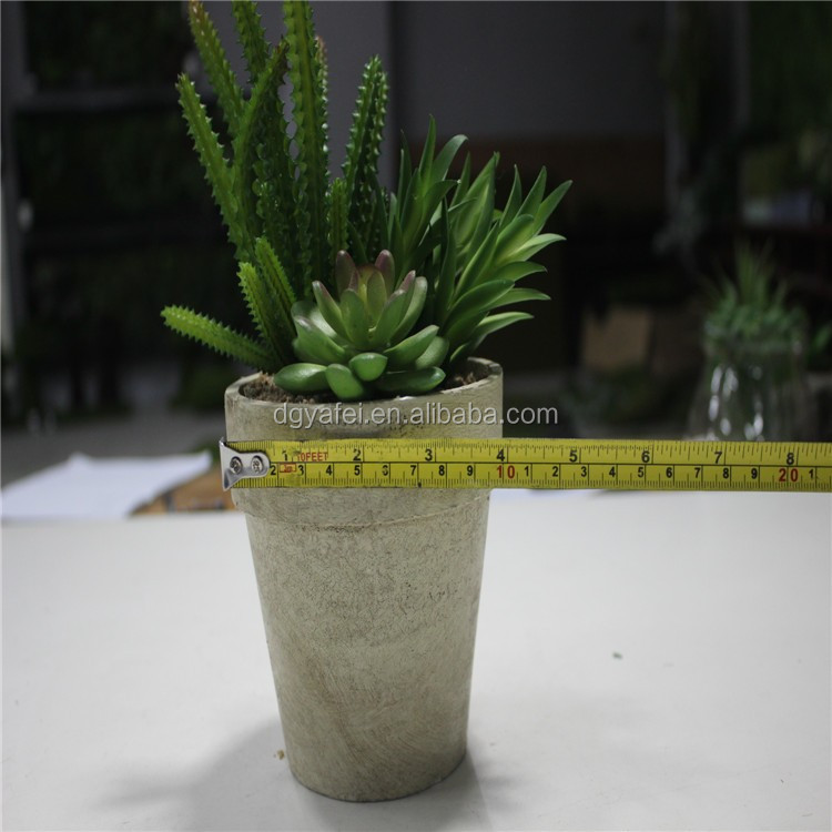 artificiail potted succulent for table/window decor