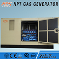 CE approved 50kw generator biogas power plant price