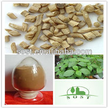 natural herbal extract powder of achyranthes