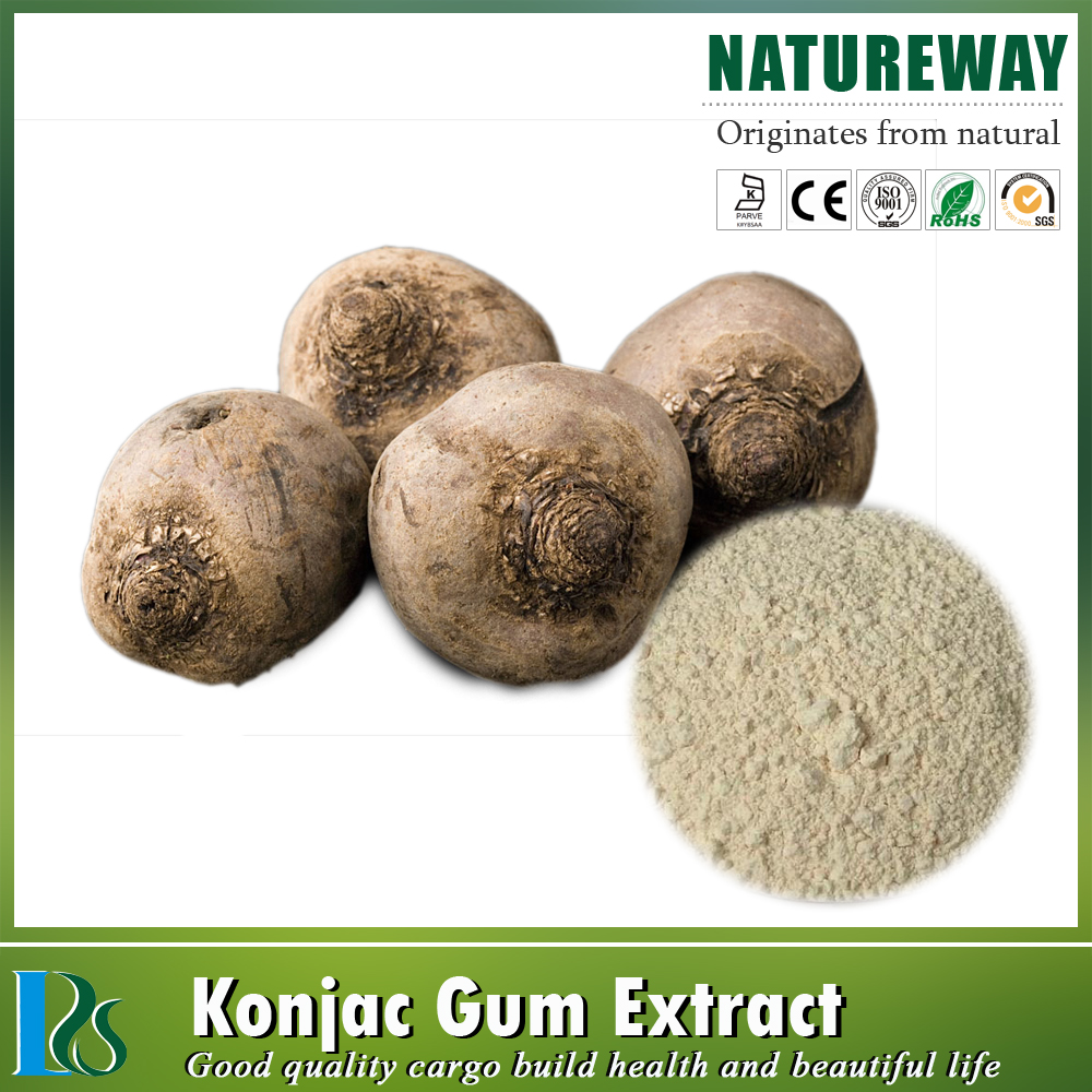 konjac root powder extract glucomannan,konjac tuber extract powder