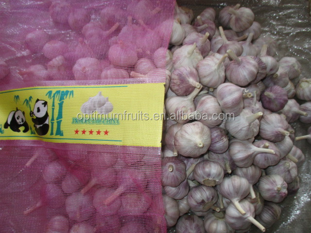 2016 China garlic price