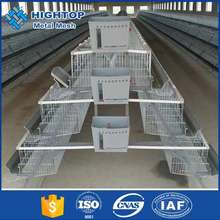 Alibaba hot sale galvanized chicken breeds