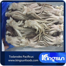 frozen todarodes pacificus squid tubes/rings/tentacle/flower