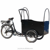 piaggio cargo tricycle