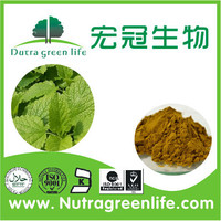 Cheap lemon balm extract/ hot sale melissa officinalis extract powder