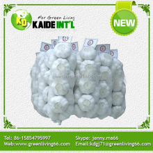 Best Selling Products Bulk Fresh China Garlic