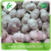Chinese natural garlic price