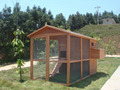 Large Wooden Chicken Coop With Large Space