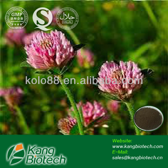 Organic plant extract powder, pure red clover extract