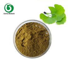 Unbeatable Price! 100% Pure and Natural Ginkgo Biloba Leaf Extract Powder