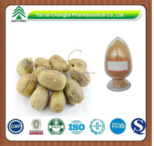 GMP factory supply herb organic Dutchmanspipe fruit P.E.