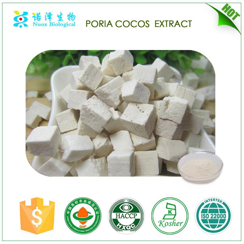 Imoving memory Hot sell Proia cocos extract