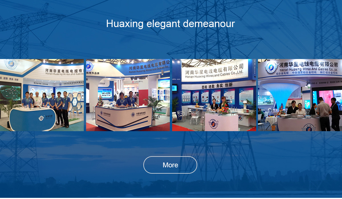 Henan Huaxing Wires And Cables Co., Ltd. - Wire and Cable
