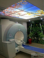 2016 hospital and clinic sky ceiling panel light