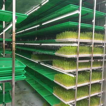 dairy farm equipment fodder solution/hydroponic wheat sprouting machine/grass growing system