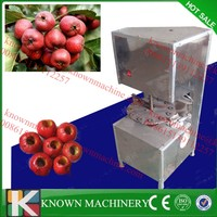 Small promotion price hawthorn core extractor,hawthorn core remover,hawthorn pitting machine