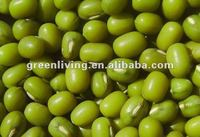 Green mung bean for sprouting in china