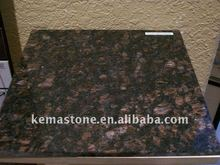 India Tan Brown Polished Granite Tile 24 x 24 for living room