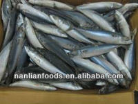 Fish (size: 100-200 mackerel )