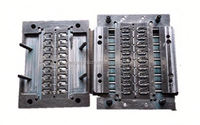 Longways injection plastic seed tray mould