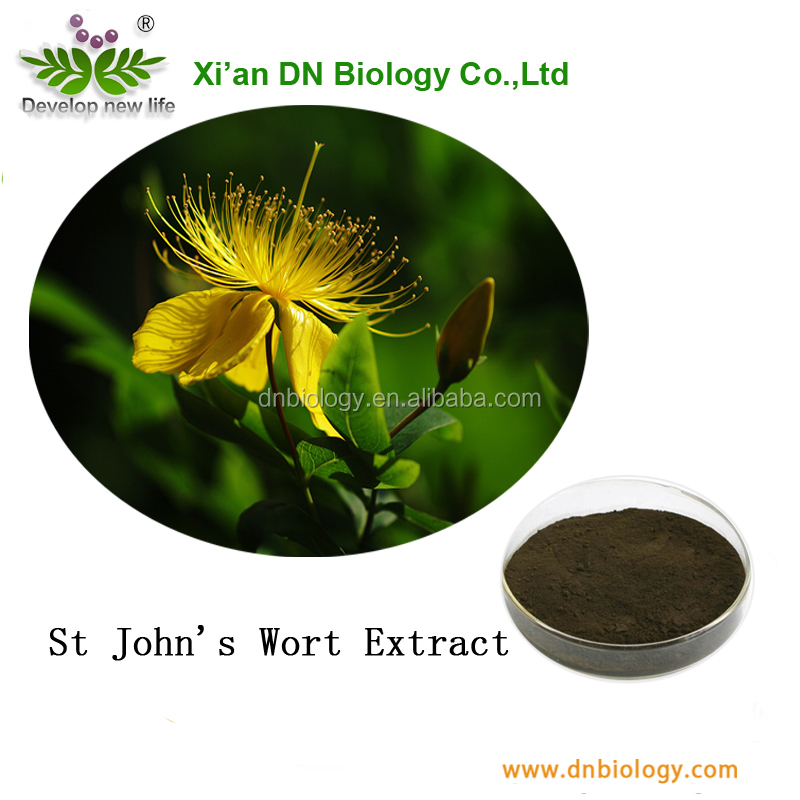 Competitive Price Powder St John's wort extract powder with Help sleep, antidepressant