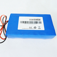 Technology Support 12V 20Ah rechargeable lithium polymer battery