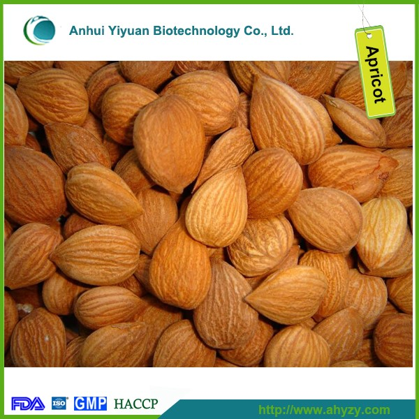 Bitter apricot kernel medicine from China