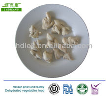 China Dehydrated garlic / ginger powder prices