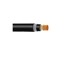 600/1000V XLPE Insulated, PVC Sheathed, Armoured Power Cables (Single Core) IEC60502-1