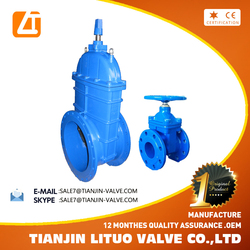 BS 5163 Ductile Iron Rising Long Stem Gate Valve DN500