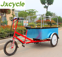 500w Powerful Moped Cargo Tricycle with Cabin