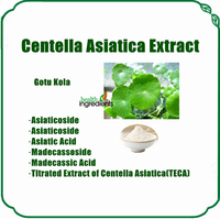GMP Factory Supplier free samples Centella Asistica extract, powder gotu kola extract
