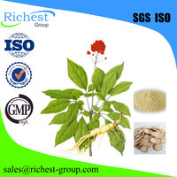 Factory Offer Asian Ginseng Root Extract Powder