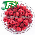 wholesale Frozen raspberry, frozen chinese raspberry whole/crumble 2015 new crop