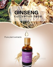 pure ginseng essential oil