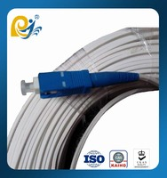 FTTH Optical Fiber Jumper FC SC Patch Cord