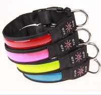 (New Products) 2017 Hot Light up LED Pet Collar