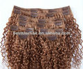Remy Human Hair Kinky Curly Clip in Hair Extension Light Brown Human Hair Extension