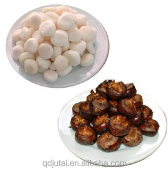 Chinese Vegetable in Tin Oriental Food Water Chesnut