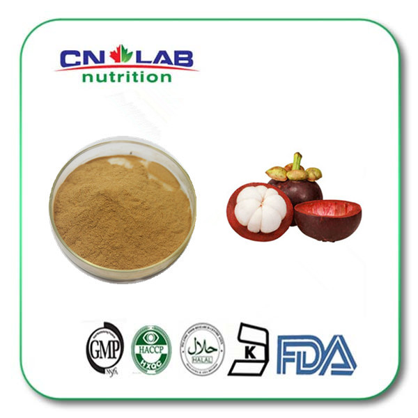 Natural Dried Mangosteen Extract Powder