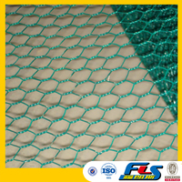 PVC Coated Hexagonal Wire Mesh/Hexagonal Chicken Wire Netting(Factory Price)