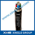 0.6/1kV Al/XLPE/SWA/PVC Power Cable