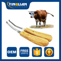 Wholesale veterinary Instrument metal trimming knives for horse